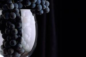 Домашнее вино из синего винограда