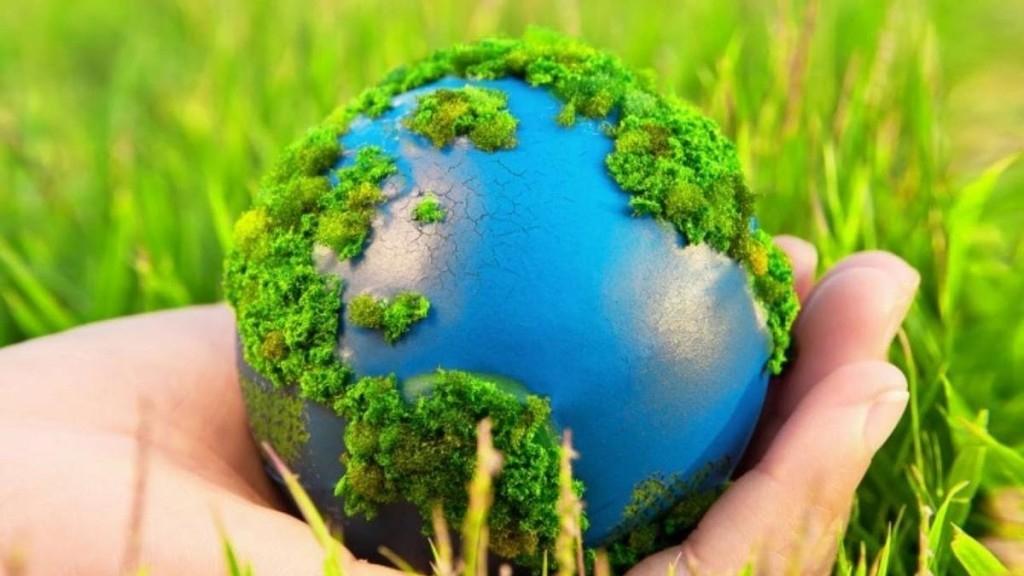 Как побудить ребенка заботиться об окружающей среде