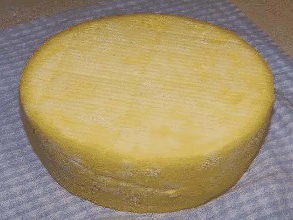 Домашний голландский сыр