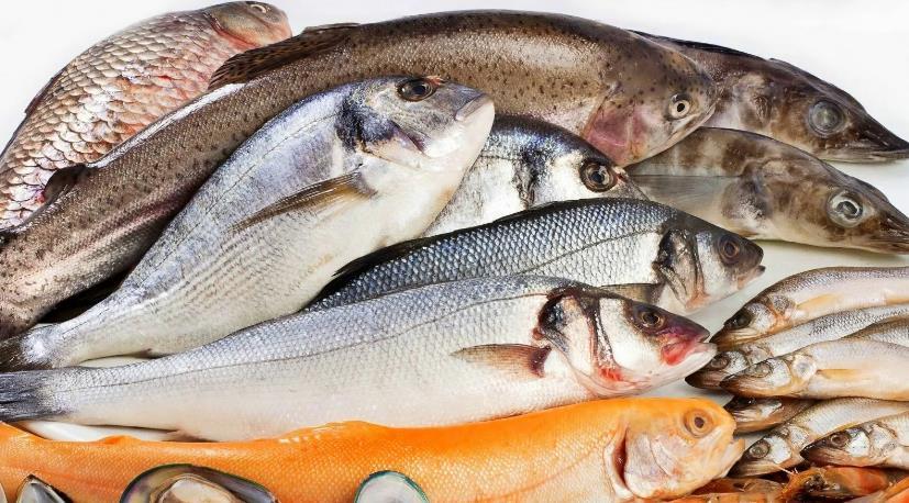 Несколько советов по приготовлению вкусных блюд из рыбы